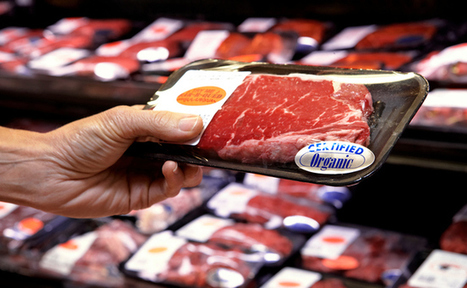 Is Meat Making Us Obese? | Care2 Healthy Living | Weight Loss News | Scoop.it