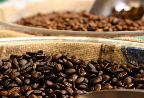 Is the Coffee Business Broken? Thoughts from Let's Talk Coffee | Coffee | Scoop.it