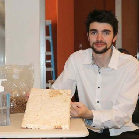 The power of fungus being studied by Perth student | SMART INNOVATIONS | Scoop.it