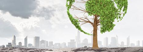 Le CGDD se penche sur la dette écologique française liée aux émissions polluantes dans l'air | Transitions vers une économie écologique | Scoop.it
