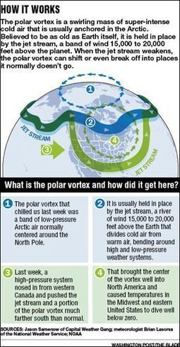 Climate change role in cold snap triggers debate | Sustain Our Earth | Scoop.it