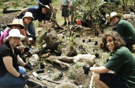 National Landcare Network » Landcare groups keep on carrying on | landcare | Scoop.it