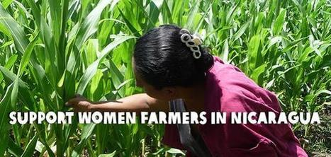 Oxfam.ca | Ending global poverty begins with women's rights. | Global Issues for 78W | Scoop.it