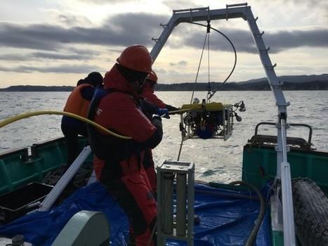 A bord du navire Greenpeace : Les impacts de la catastrophe de Fukushima sur la vie marine et les pêcheurs (podcast) | Japon : séisme, tsunami & conséquences | Scoop.it