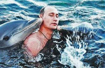 New Video Proves Russian 'Killer Dolphin' Forces Are Real | Global politics | Scoop.it