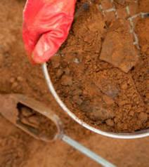 Un promeneur tombe sur un site néolithique jusqu'alors inconnu | World Neolithic | Scoop.it