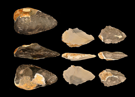 Language and tool-making skills evolved at same time - HeritageDaily | Archaeology | Scoop.it
