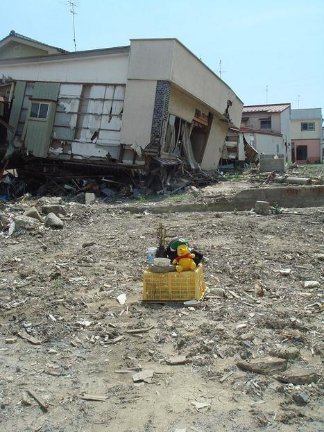 [photo] Et pendant ce temps là ... à ISHINOMAKI | papillonverre | Japon : séisme, tsunami & conséquences | Scoop.it