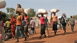 Food security alarm for east, central Africa | NGOs in Human Rights, Peace and Development | Scoop.it