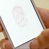 Sen. Al Franken letter grills Apple's Tim Cook over Touch ID | Digital Trends | Digital-News on Scoop.it today | Scoop.it