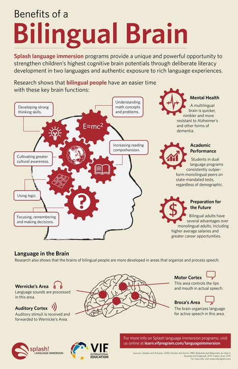 Benefits of a Bilingual Brain Infographic - e-Learning Infographics | Nueroscience | Scoop.it