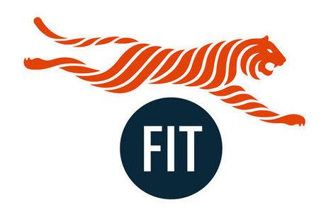 New identity FIT Athletics | Fashion Institute of Technology | Pentagram | ::Sports Entrepreneur Magazine:: (4093229) | Scoop.it