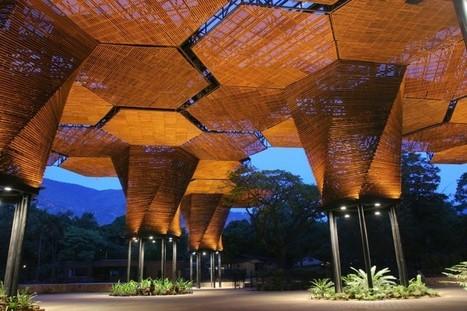 El diseño biofílico. El poder de la arquitectura y la naturaleza.   What about? What's up? Qué pasa?   Scoop.it