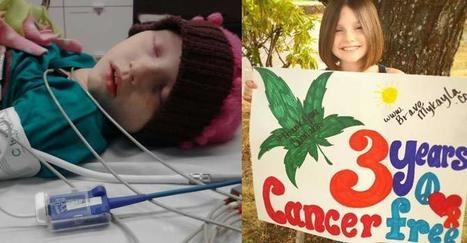 Only Six Days After Starting Cannabis Oil, This Little Girl's Leukemia Went into Remission | How Cannabis Will Change the World! | Scoop.it