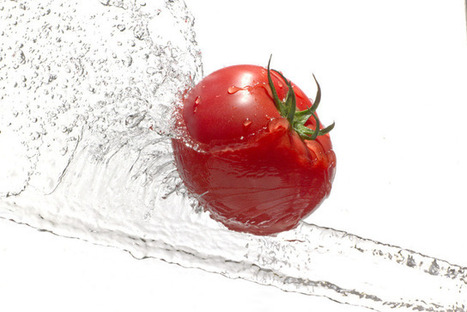 Tomato Water:  Your New Best Friend | the Strategic Foodie | Scoop.it
