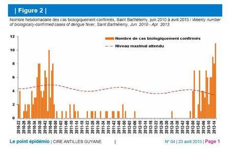 Épidémie de dengue à Saint-Barthélemy | EntomoNews | Scoop.it