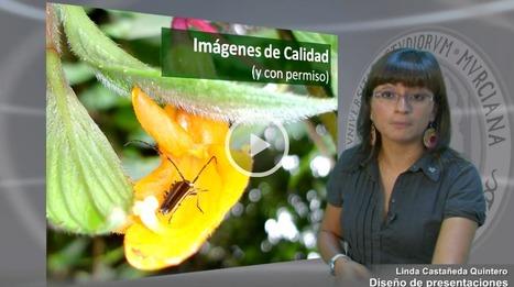 Diseño de presentaciones por Linda Castañeda | Presentaciones Digitales | Scoop.it