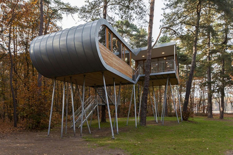 Creative and Inspiring Treehouse for Children and Adults in Belgium | Design | News, E-learning, Architecture of the future at news.arcilook.com | ARTLearning | Scoop.it