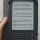 Can E-Readers Ease Reading for Dyslexics? | social media and digital marketing | Scoop.it