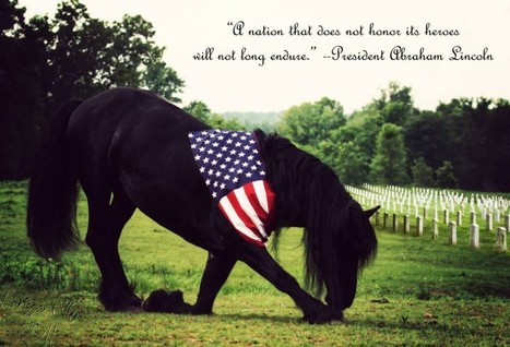 Memorial Day: Thank you to our heroes | Colorado Dude Ranch Vacations | Horse Sense | Scoop.it