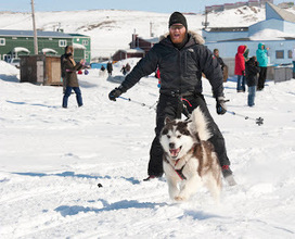 Ron Wassink: Racing Dogs, Building Igloos at Toonik Tyme in Iqaluit | The Arctic - Nunavut | Scoop.it
