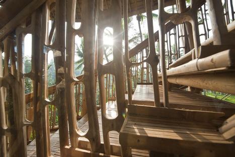 » Village de bambou par le designer Elora Hardy<== | Céka décore | Scoop.it
