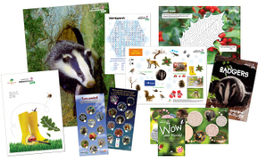 Tree activity pack from nature detectives | Popular Websites | Scoop.it