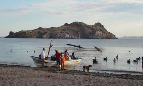 Combining ecology and human needs, researchers assess sustainability of Baja ... - Phys.Org | Environment & Ecology | Scoop.it