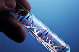 bluebird bio Provides Updates on HSC Gene Therapy Programs   Vectorology - GEG Tech top picks   Scoop.it