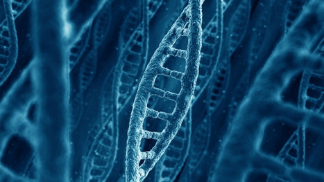 Human Gene Patenting: Yes, Companies Can Own Your DNA | LESS TRAVELED | Scoop.it