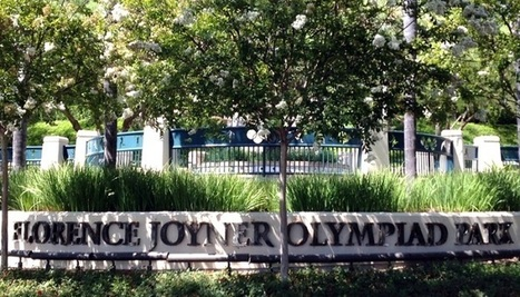 How Fencing Beautifies the Popular Parks in Mission Viejo | Outoor Fencing | Scoop.it