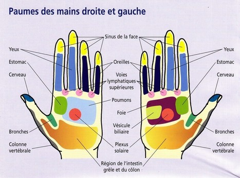 Appuyez sur les points de votre main pour apaiser vos douleurs | Click & Mortar | Scoop.it