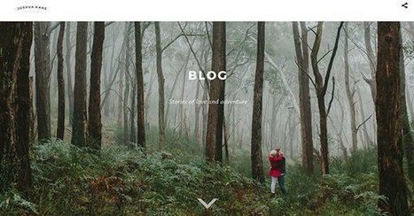 Blogging For SEO - Use This Template! | Stock Photography Business | Scoop.it