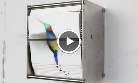 Des illustrations papier se succèdent pour donner vie à de spectaculaires animations d'oiseaux   graphic design creation   Scoop.it