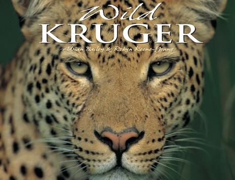 National Parken Krüger, en klassisk favorit blandt besøgende   Rejser Afrika   Scoop.it
