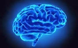 How Alzheimer's Destroys the Brain -- Video | Alzheimer's Dementia | Scoop.it