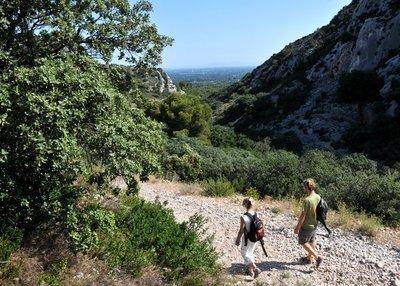 Dans l'intimité des Alpilles | Balades, randonnées, activités de pleine nature | Scoop.it
