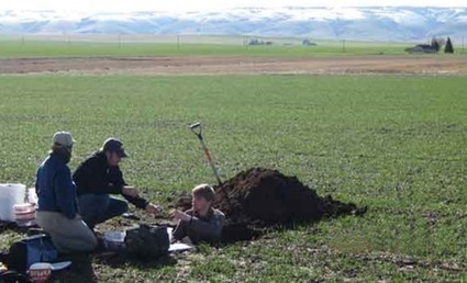 Soil organic matter susceptible to climate change | Sustain Our Earth | Scoop.it