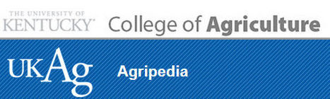 (EN) - Agripedia, Interactive Multimedia Instructional Agriculture Resources | ca.uky.edu | Research Capacity-Building in Africa | Scoop.it