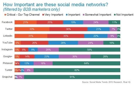Et les deux réseaux sociaux préférés des marketeurs B2B sont… | L'Univers du Cloud Computing dans le Monde et Ailleurs | Scoop.it