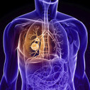 Lung Cancer Surgery: Removing the Fear and Mystery (Video) | Global Health - Cancer | Scoop.it