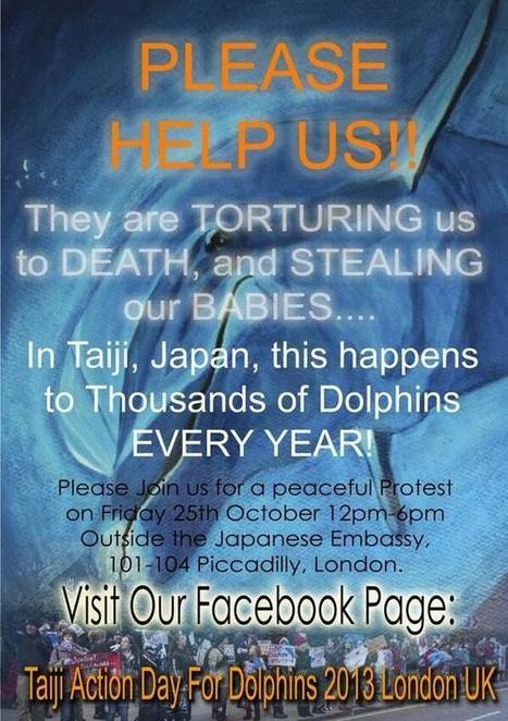 Twitter / Jools_Orca: Taiji Action Day in London. ... | Intrepid #Cove #Guardian @ManiNeptune | Scoop.it