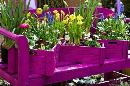 Great crates! | Upcycled Garden Style | Scoop.it