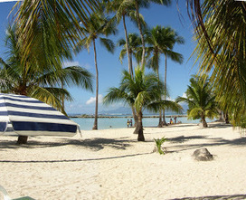 Sainte Anne: Soleil en Guadeloupe : Sainte Anne vous garantie la chaleur cet été 2013 | vacances d'été pas chère en 2013 en Guadeloupe | Scoop.it