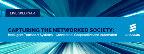 Capturing the Networked Society:   Peer2Politics   Scoop.it