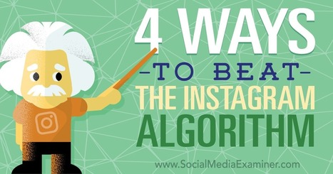 4 Ways to Beat the Instagram Algorithm : Social Media Examiner | Social Media Latest Trends | Scoop.it