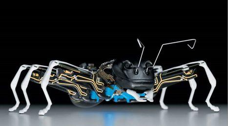 Des robots-insectes pour inventer l'usine du futur | Ressources pour la Technologie au College | Scoop.it