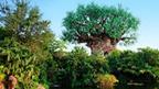 Parques Temáticos | Walt Disney World Resort | Walt Disney Word | Scoop.it