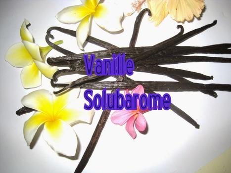 I.Vanessence: Arôme Vanille Solubarome | De plume et d'écran | Scoop.it