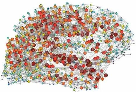 'Rain Man'-like brains mapped with network analysis | KurzweilAI | e-Xploration | Scoop.it